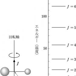 回転量子数